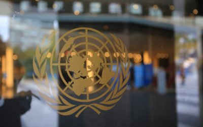 A UN Statement on Migration and COVID-19 Pandemic