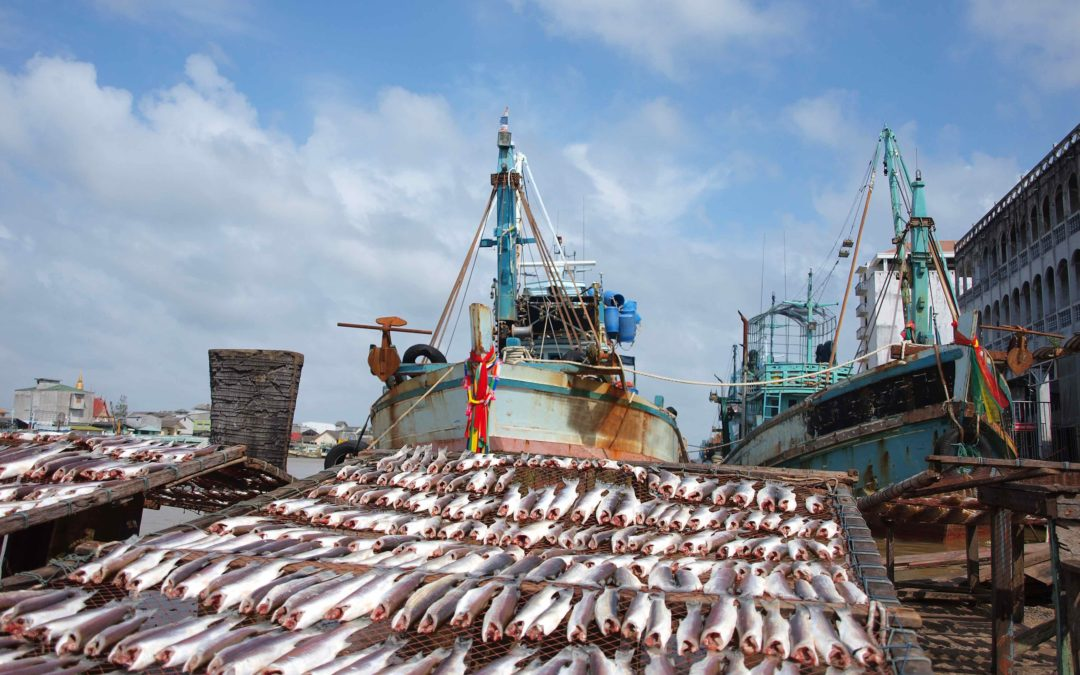 Labor Shortages slow demand for US Seafood Industry